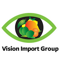 Vision Import Group